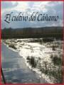 El cultivo del cáñamo (2010)