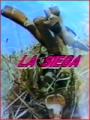 La siega (aprox. 1994)