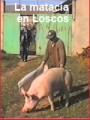La matacía en Loscos (aprox. 1994)