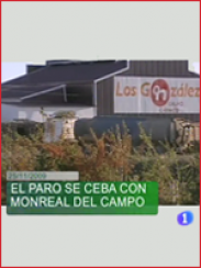 Paro en Monreal del Campo (2009)