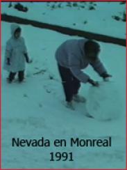 Nevada en Monreal del Campo (1991)