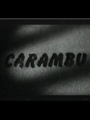 Carambú, de José Antonio Vizárraga (1991)