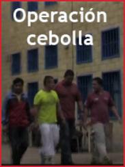 Onion operation (= Operación Cebolla) (2009)