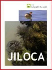 Comarca del Jiloca (2009)