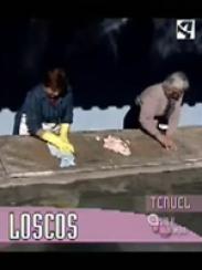Hoy nos visita… Loscos (2007)